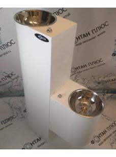 Фонтанчик питьевой Родничок-3 двойной, с кнопкой и СанПиН кольцом